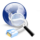 IP/DNS Detect